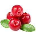 Cranberry Hot Sauce